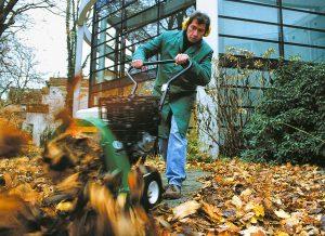 Grünpflege und Hausmeisterdienst